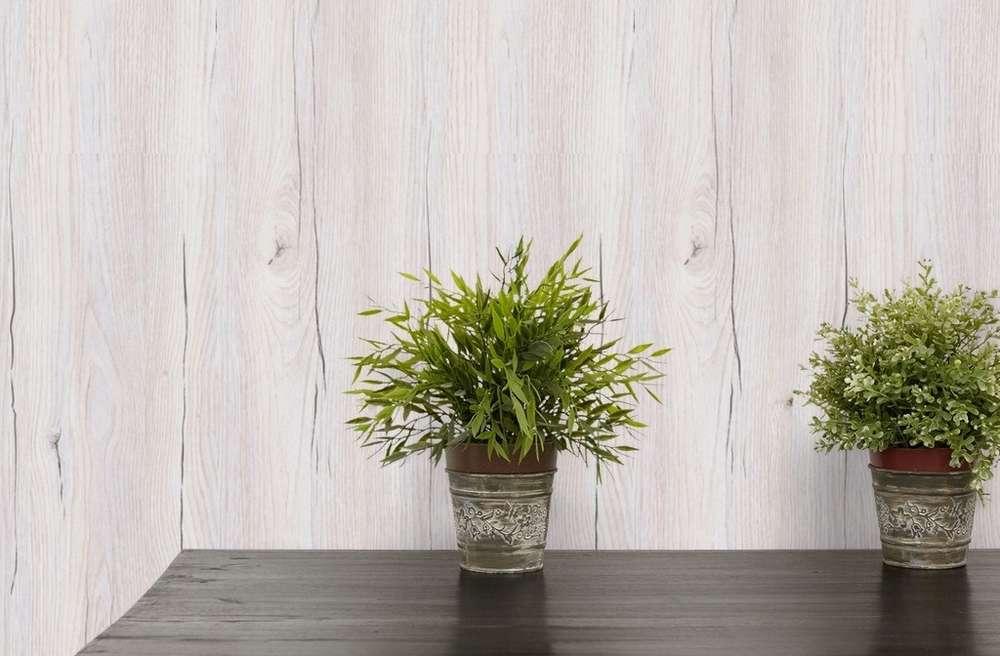 Berühmt Moderna Logifino Wand-Decken-Paneele Risseiche hell - HEIMFEELING WL22